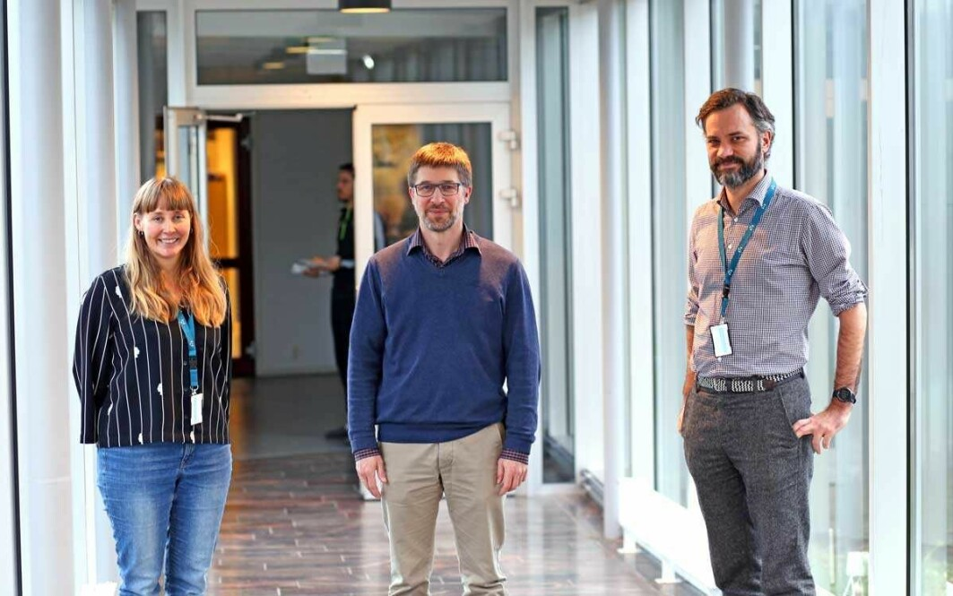 Partners in six countries will develop an app to prevent NCD's. From left: Merethe Drivdal, Thomas Schopf (project coordinator) and centre director Stein Olav Skrøvseth at the Norwegian Centre for E-health Research.