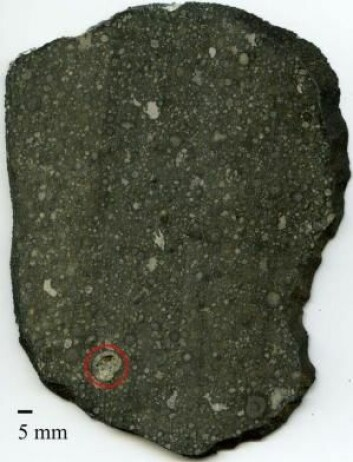 Et inklusjon (i rød ring) i Allende-meteoritten kunne fortelle om solsystemets tidligste dager. (Foto: Center for Stjerne- og Planetdannelse)