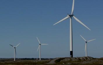 Flere av vindturbinene i Smøla vindkraftverk er malt delvis svarte for å redusere faren for at fugler kolliderer. (Foto: Roel May/NINA)