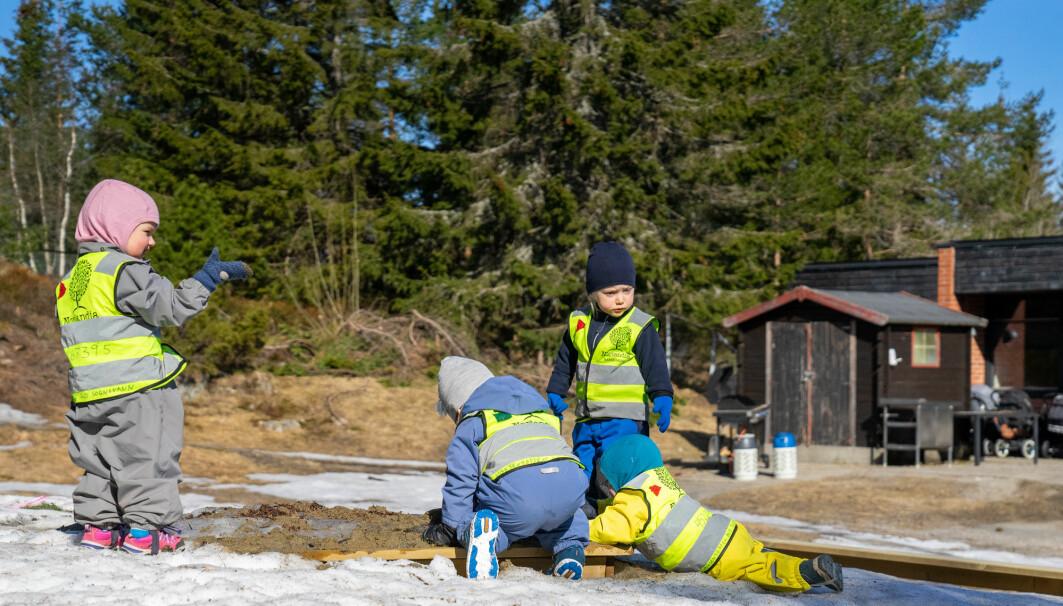 Barn som fikk mye dagslys, var mindre urolige og ukonsentrerte, viser studie. Bildet er fra Voksentoppen ski og friluftsbarnehage. (Foto: Thomas Brun / NTB)