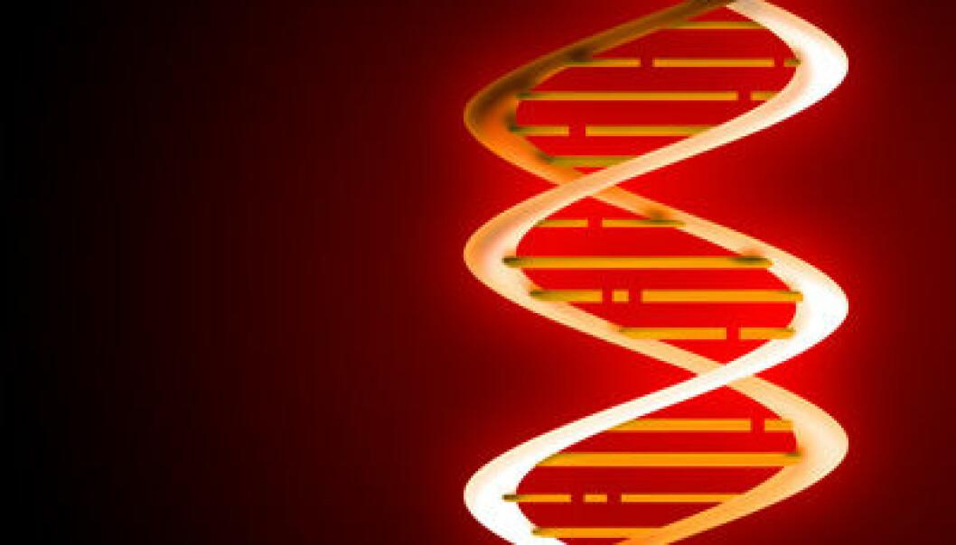 DNA-sporing av rømt laks