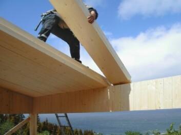 Massivtre er mindre trebiter som settes sammen på tvers av hverandre til svære elementer. Her brukes det til hyttebygging i Sør-Trøndelag, men det ser også ut til å fungere godt i høyere hus. (Foto: Norsk Massivtre AS)