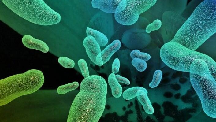 Hele 90 prosent av cellene i kroppen kan bestå av fremmede mikrober. Mange av disse bakteriene er helt nødvendige for å holde deg frisk. (Foto: Colourbox)