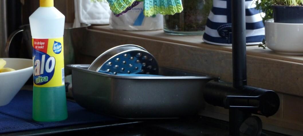 Store forskjeller i kjøkkenhygiene mellom europeiske land