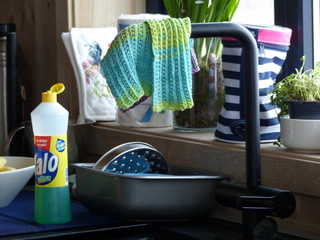 Researchers visited 87 households in six countries, Norway, England, France, Portugal, Hungary and Romania, to investigate different kitchen hygiene practices.