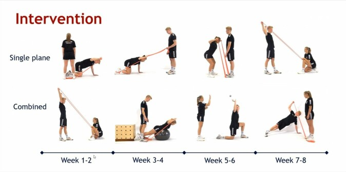 Exercises to strengthen the outward rotational muscles of the shoulder. These were carried out by handball players from six teams over an eight-week period.