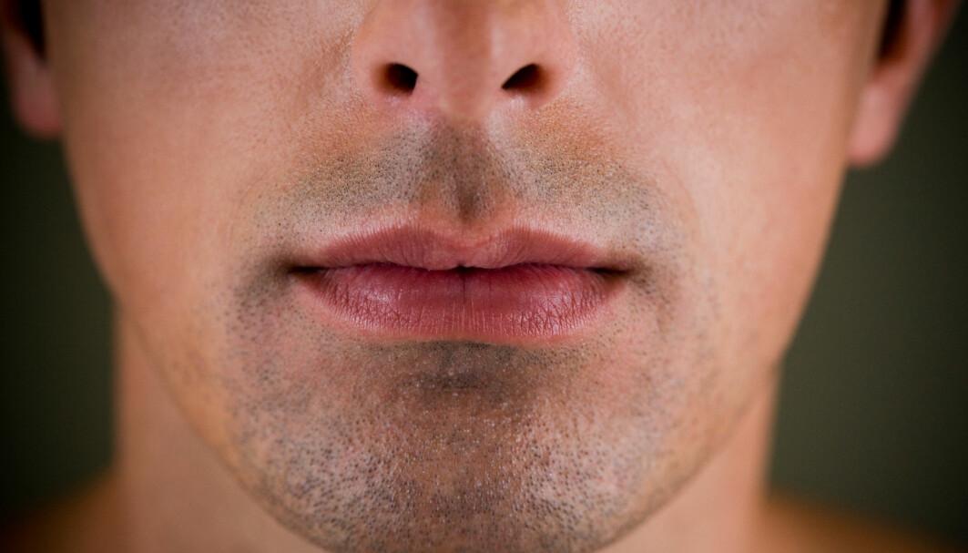Formen på hjernen og ansiktet påvirker hverandre under tidlig embryoutvikling ifølge en ny studie.