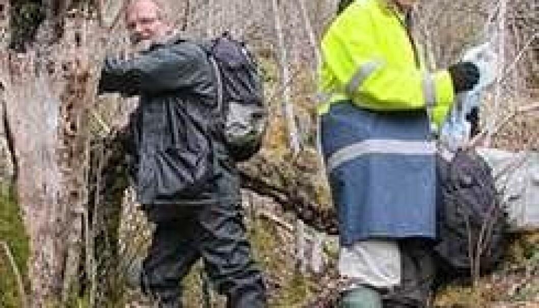 Björn Nordén og Thomas Læssøe på feltarbeid i gammel edelløvskog ved Bjelland i Etne kommune, Hordaland. John Bjarne Jordal
