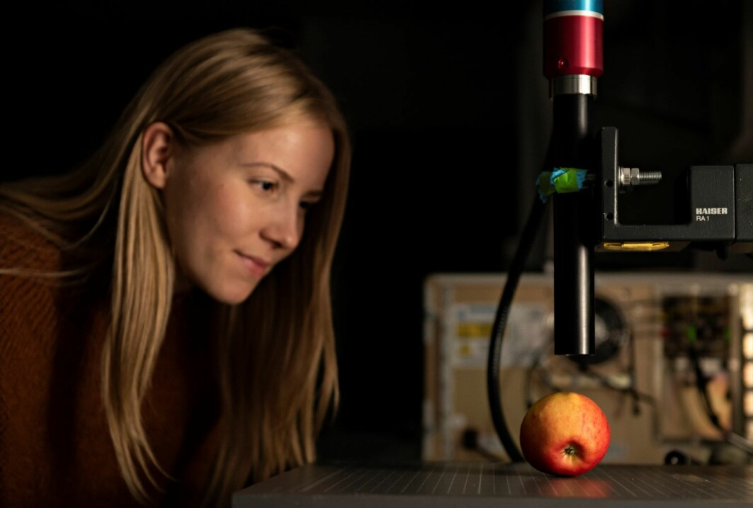 Tiril Aurora Lintvedt undersøker hvordan ramanspektroskopi kan brukes i matindustrien for nøyaktige målinger av råvarer.