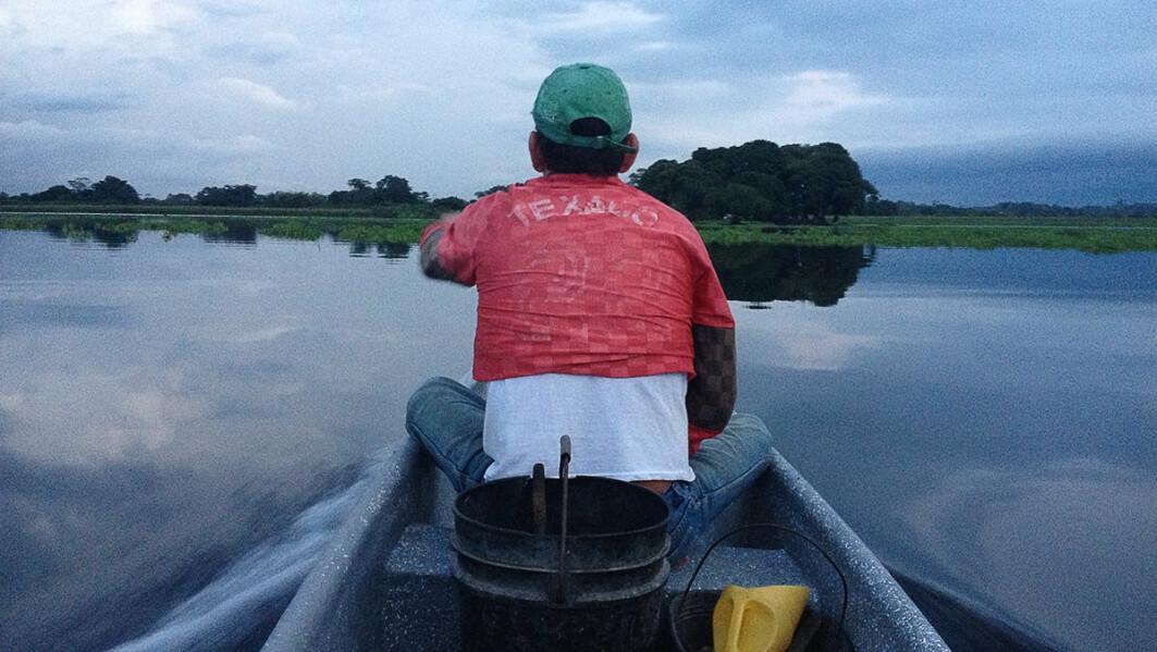 Field work: Mónica Amador spent ten months in the swamp.