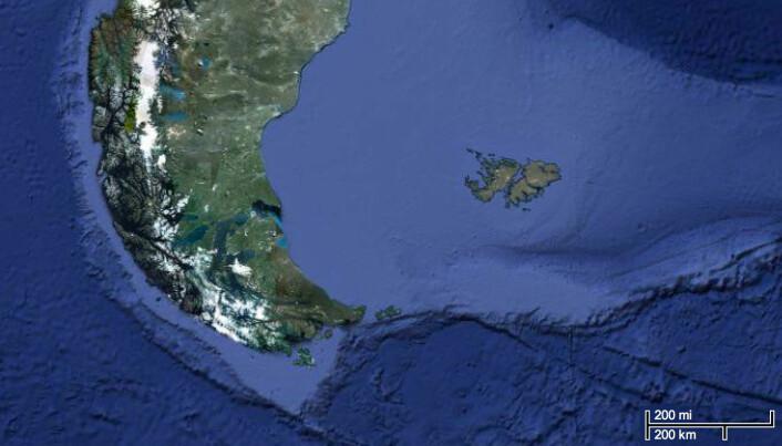 Illustrasjonen viser den nåværende avstanden mellom Sør-Amerika og Falklandsøyene. (Foto: (Illustrasjon: Google maps))