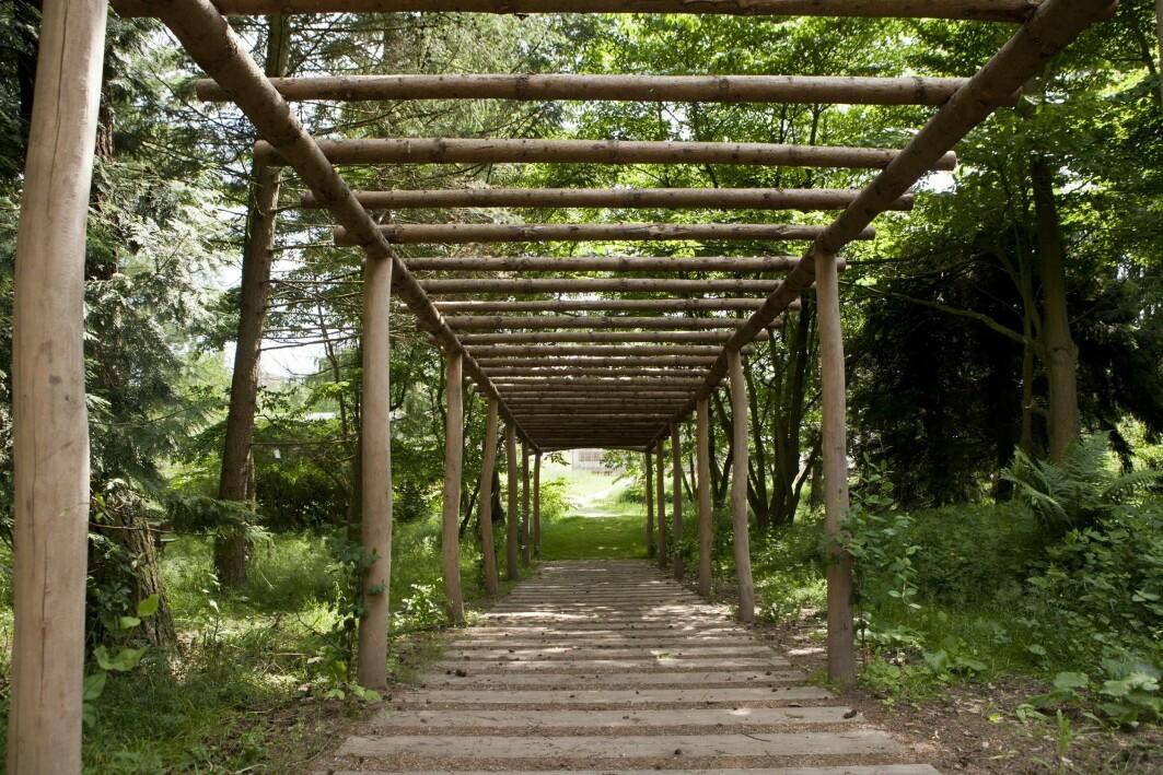 Terapihagen Nacadia er utformet som en «skogshage» med levende bygningsmateriale som skal gi gjestene en følelse av å være en del av naturen.