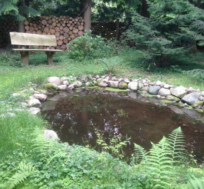 Hagen er skjermet fra resten av samfunnet for at gjestene skal kunne føle seg beskyttet.