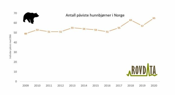 Antall hunnbjørner påvist med DNA i Norge 2009-2020.