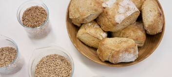 Do you believe you are gluten intolerant? You could be mistaken