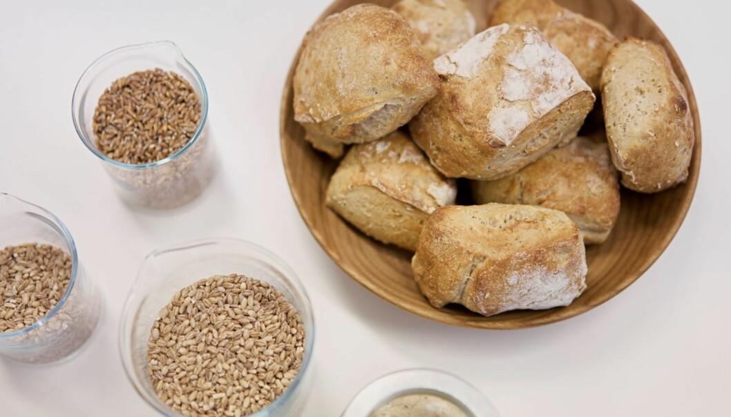 Gluten er proteiner som finnes i korn. Blant annet er det disse proteinene som gjør det mulig for gjærbakst å heve seg og bli luftig.