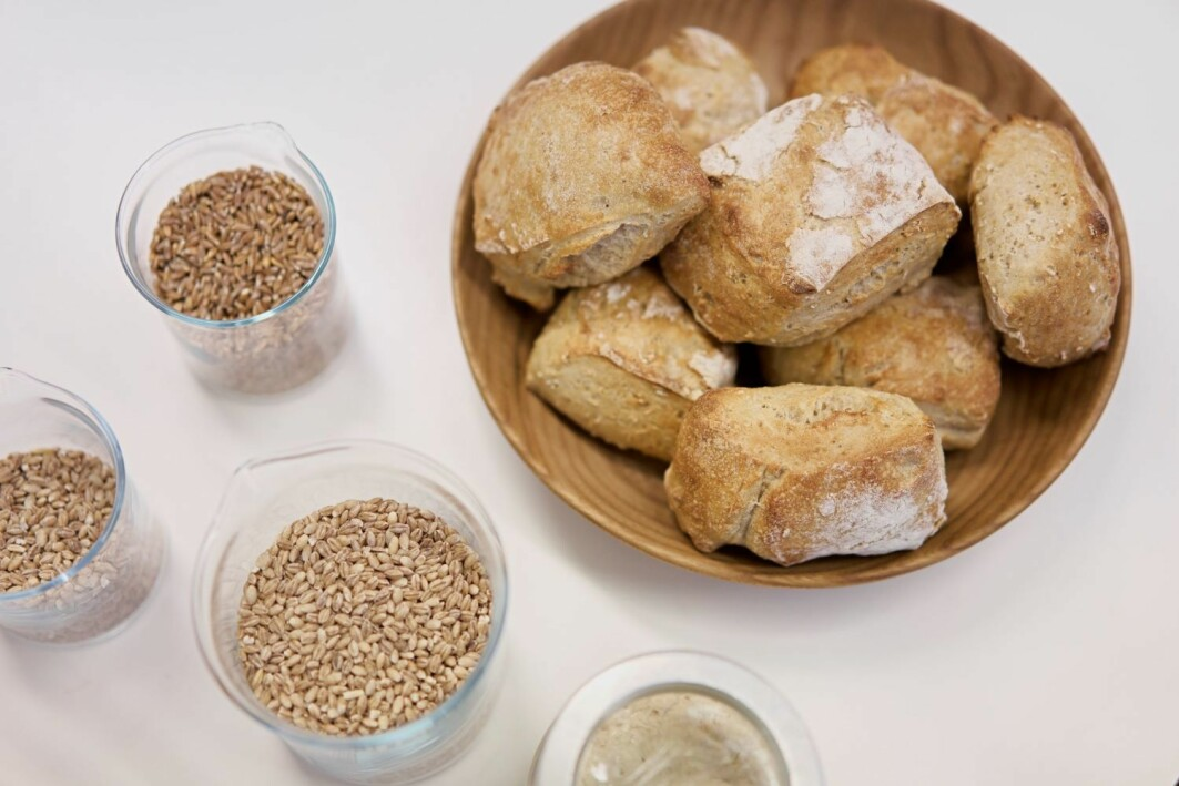 Gluten is a group of proteins found in grains. Among other things, these proteins are what enable yeast-leavened dough to rise.