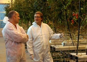 Forskningstekniker Henk Maessen og forsker Michel Verheul ved Bioforsk Vest Særheim. (Foto: Jon Schärer)