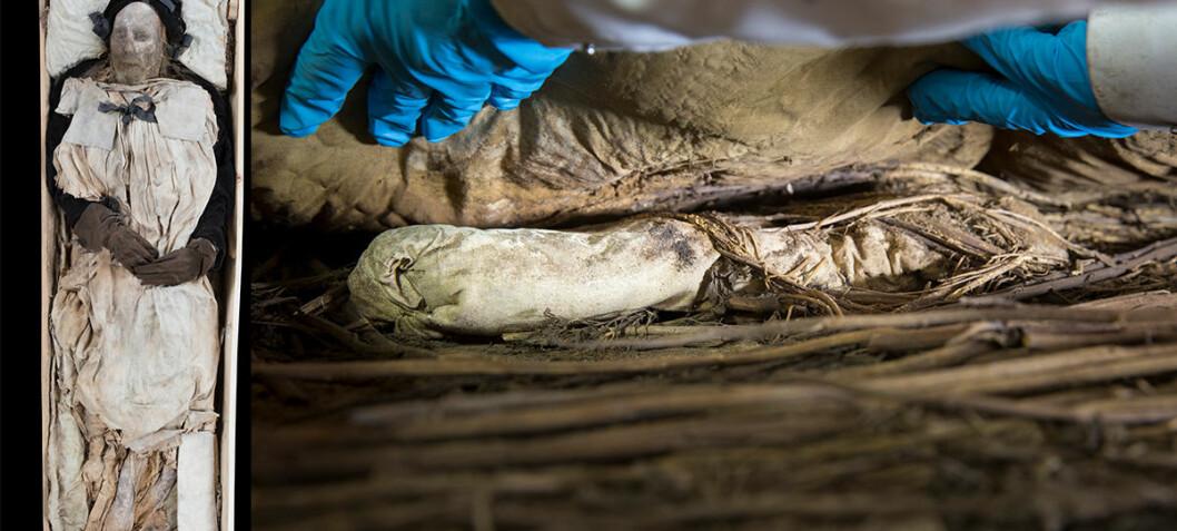 Forskere kan ha løst mysteriet om fosteret som lå under biskopens mumie