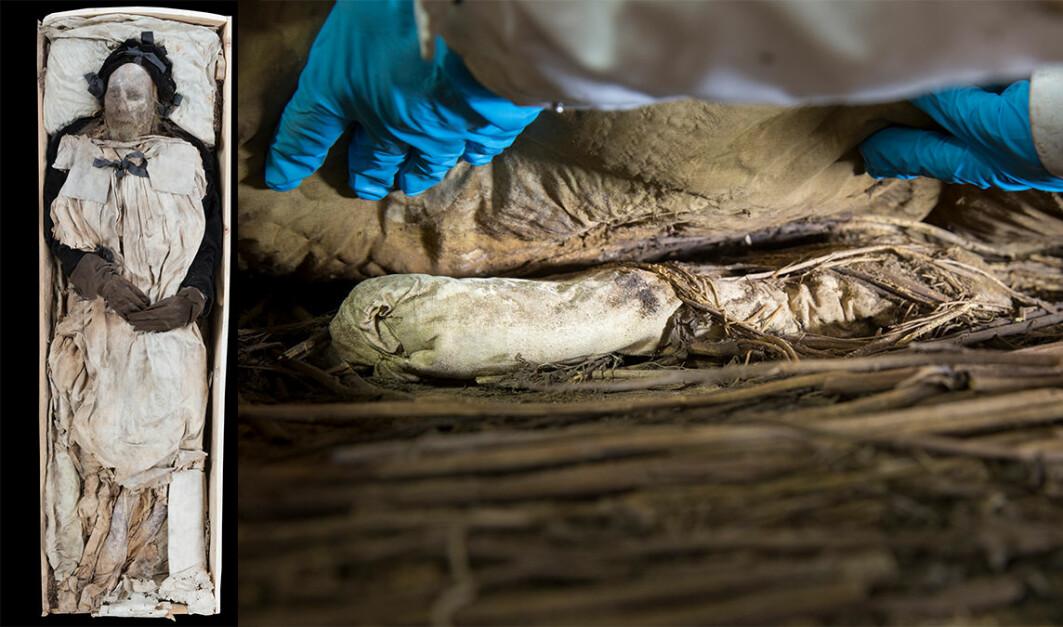 Fosteret var pakket inn i et linklede i graven til Peder Winstrup. Til venstre er mumien til Winstrup, til høyre er fosteret pakket inn lin nederst i kisten.