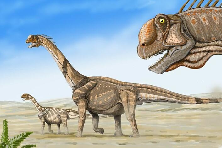 Kunstnerisk framstilling av hvordan de opptil 15 meter lange Camarasaurene kan ha sett ut. (Foto: (Kilde: Dmitry Bogdanov/ Wikimedia Commons))