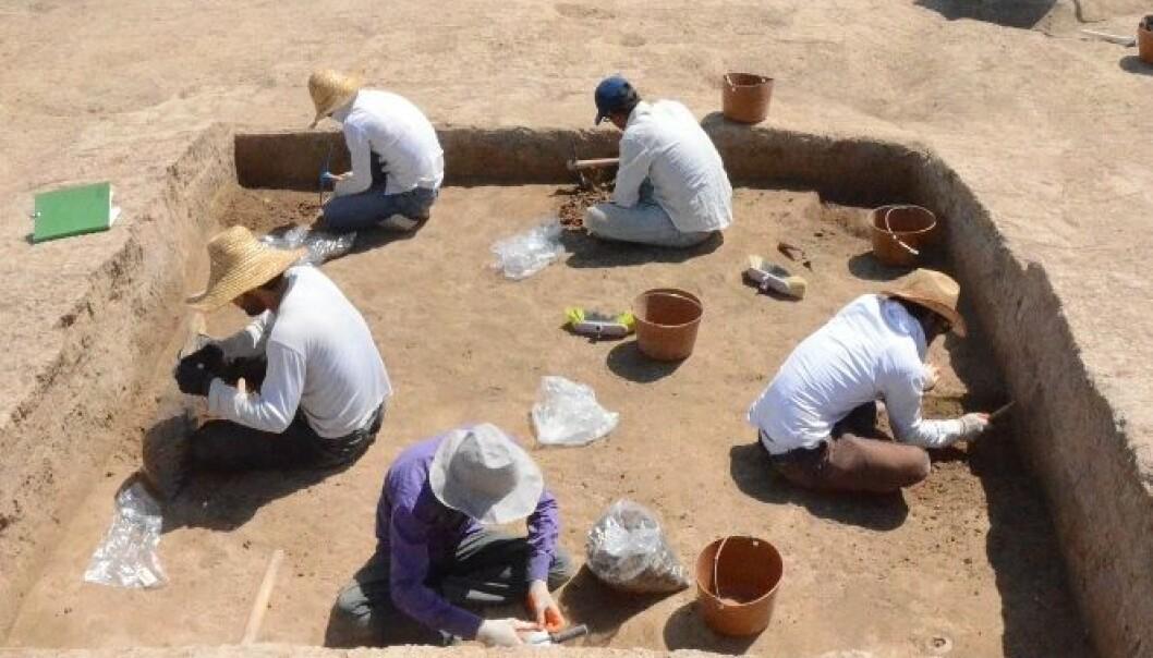 Graver ut tidlig bysamfunn i Irak