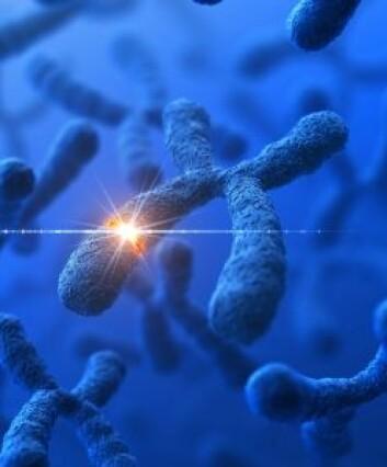 Kan det være noe på X-kromosomet som beskytter jenter fra autistiske lidelser? (Foto: Istockphoto)