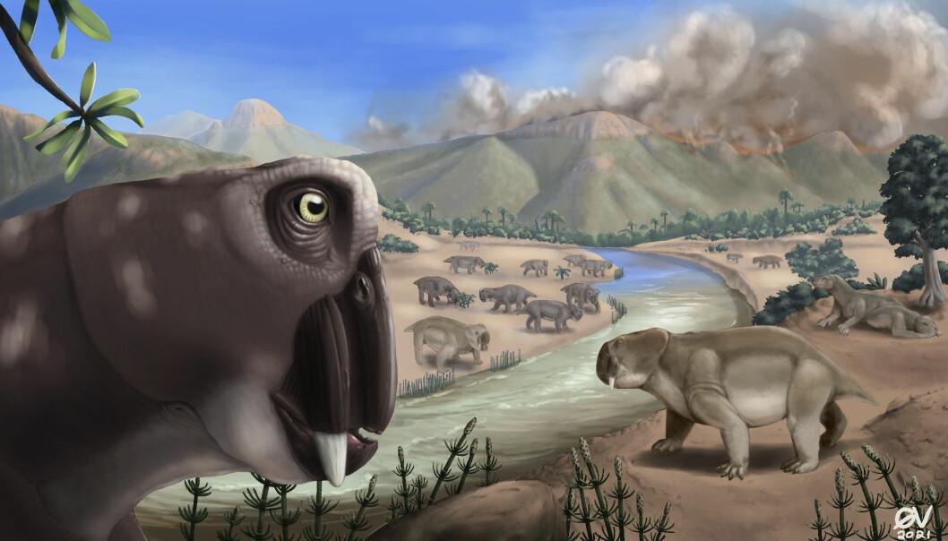 Slik ser en kunstner for seg at Lystrosaurus så ut i øyeblikket da vulkanene brøt ut, og masseytryddelsen var i gang.