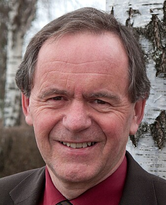 – Dyrka mark og beite er ressurser som må benyttes der de ligger, sier Arne Bardalen ved NIBIO.
