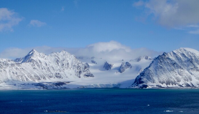 – Vi kan lære mye om evolusjonen ved å studere det ekstreme, sier Siri Birkeland. Da hun først kom til Svalbard, ble hun overrasket over hvor lite det var forsket på kuldetoleranse hos arktiske planter.