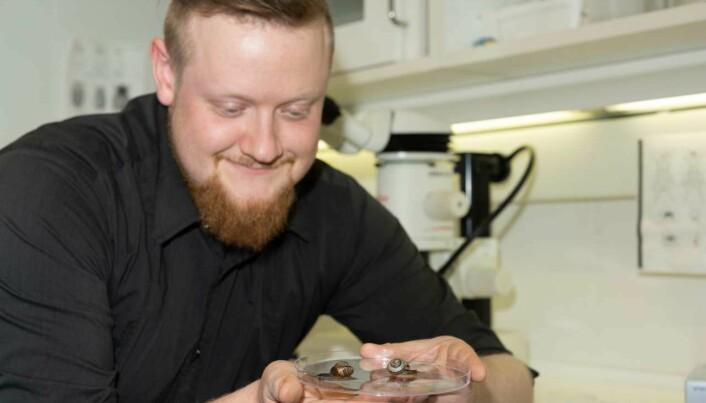 Henrik Antzée-Hyllseth forsker på biologisk kontroll på brunskogsnegler og hvordan dette påvirker andre snegler.
