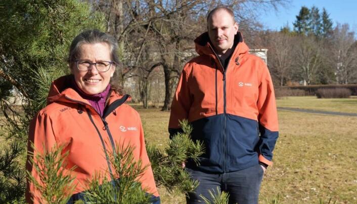 May Bente Brurberg og Simeon Rossman har tro på at den nye metoden med miljø-DNA metastrekkoding vil gi mye bedre innsikt i hva importen av planter faktisk betyr for norsk natur og landbruk.