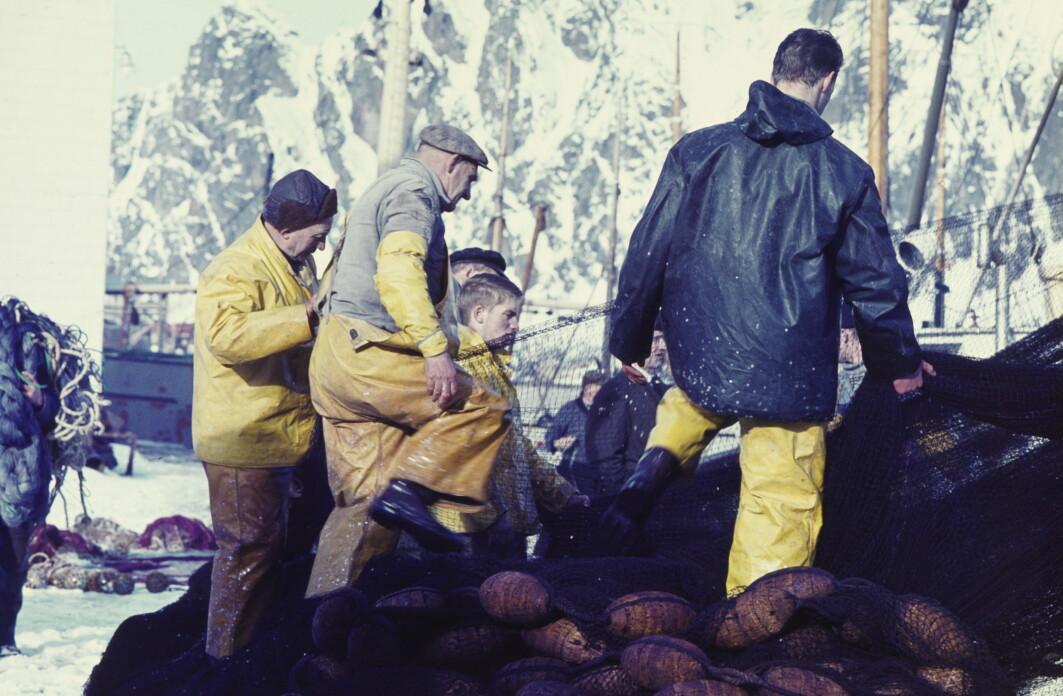 Lofotfisket har i mange århundrer vært det viktigste sesongfisket av torsk i Norge.