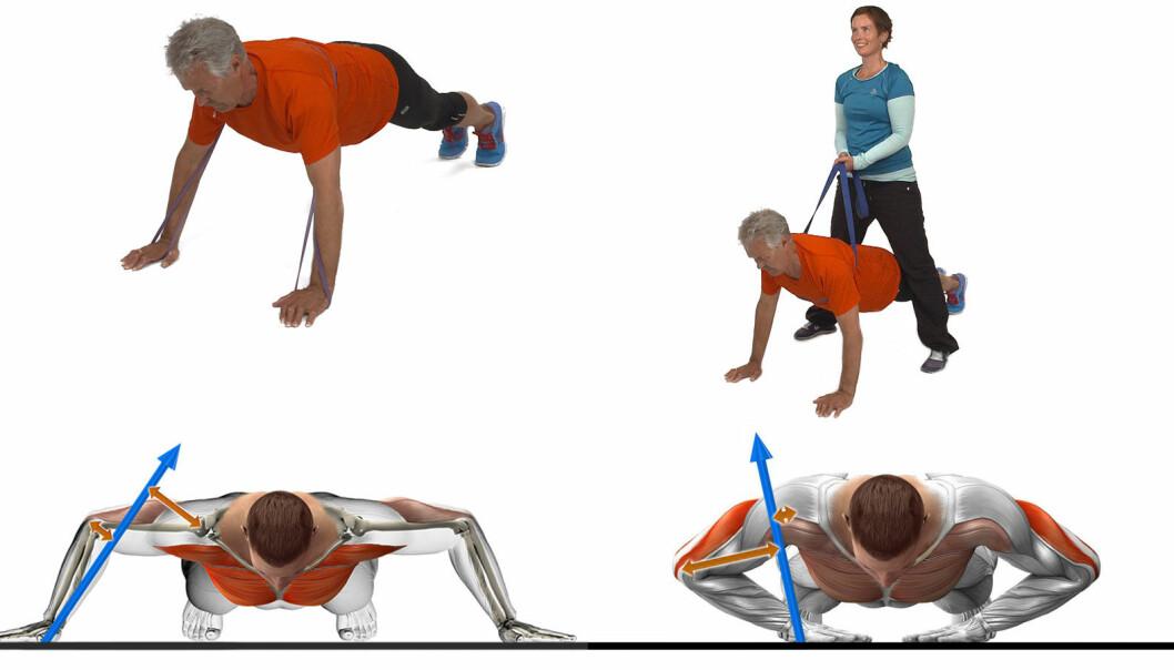 – Å forstå mekanismene og hvordan belastningen endrer seg, er avgjørende for å kunne justere styrkeøvelser riktig, sier forsker. Her pushups hvor variasjoner med og uten strikk gjør øvelsen tung eller lett.