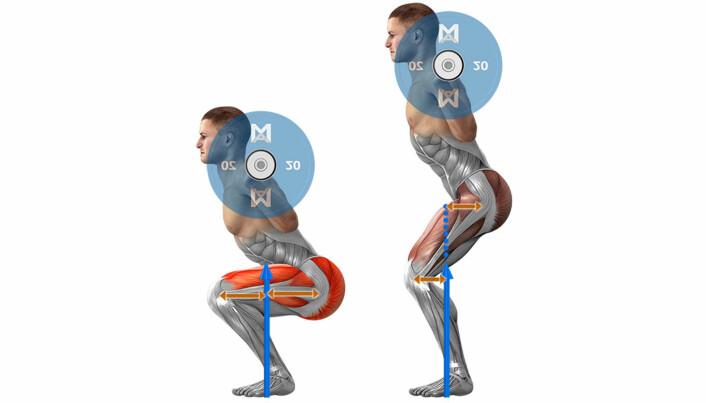 Eksempel på biomekanikk: Momentarmene endrer seg når du gjør for eksempel en knebøyøvelse. Hvor mye muskelkraft du må bruke avhenger først og fremst av avstanden mellom leddene i forhold til tyngdekraften. Jo mer horisontalt lårbeinet er, desto tyngre blir løftet.
