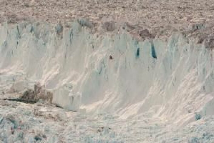 En enorm isbre i Nordøst-Grønland har siden 2006 mistet store mengder is. Isbreens bidrag til stigningene i verdenshavene er ikke med i forskernes modeller. (Foto: Shfaqat Abbas Khan)