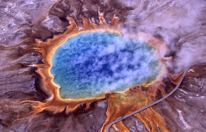 Grand Prismatic Spring i Yellowstone nasjonalpark i USA. Asurblått vann fra varme kilder stiger mot bredder av orange alger og bakterier. (Foto: National Park Service, Wikimedia Commons)