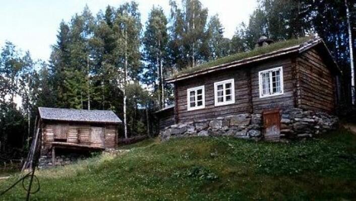 På dette huset fra begynnelsen av 1800-tallet ser vi inngangen til potetkjelleren. Det står i dag i Friluftsmuseet Maihaugen i Lillehammer. (Foto: Kåre Hosar/Maihaugen)