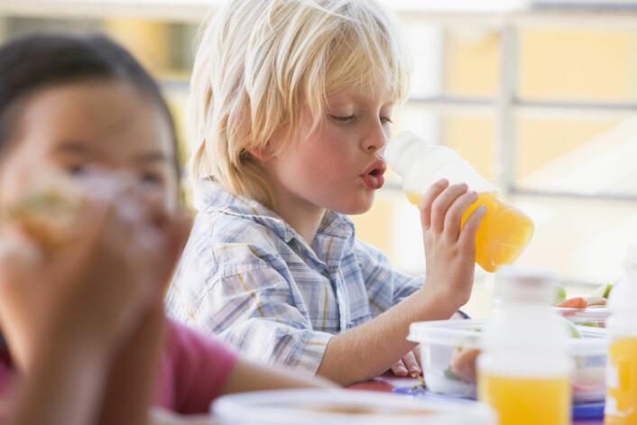 Skolematen er tema for Forskningskampanjen 2011. (Foto: Shutterstock)