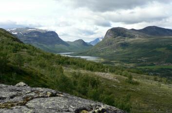 inn i Sikkilsdalen. Til høyre ligger det Sikkilsdalseteret og Prinsehytta. (Foto: Jutta Kapfer)