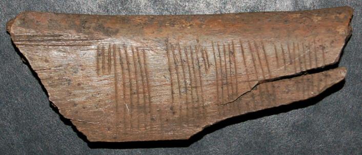 En hverdagslig beskjed skrevet i kode: «Kyss meg» står det på en beinbit fra Sigtuna i Sverige fra 1100- eller 1200-tallet. Koden er sifferruner, den vanligste koden man kjenner fra middelalderen i Skandinavia. Her i en variant som kalles is-runer. (Foto: Jonas Nordby)