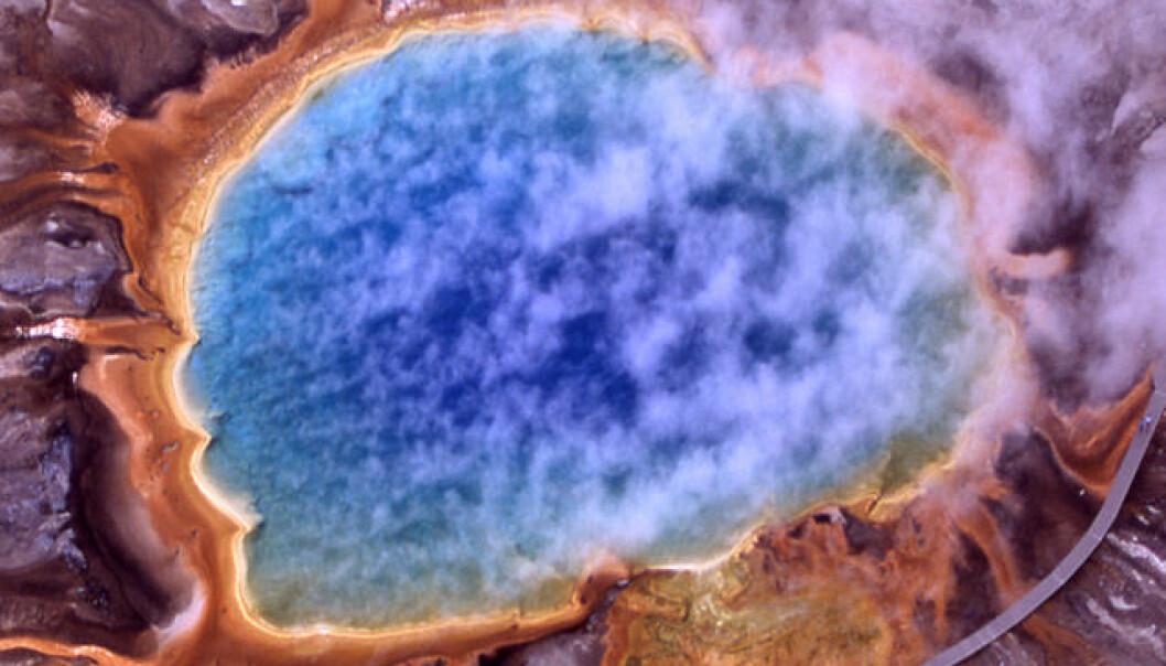 Grand Prismatic Spring i Yellowstone nasjonalpark. Asurblått vann fra varme kilder stiger mot bredder av orange alger og bakterier. National Park Service, Wikimedia Commons