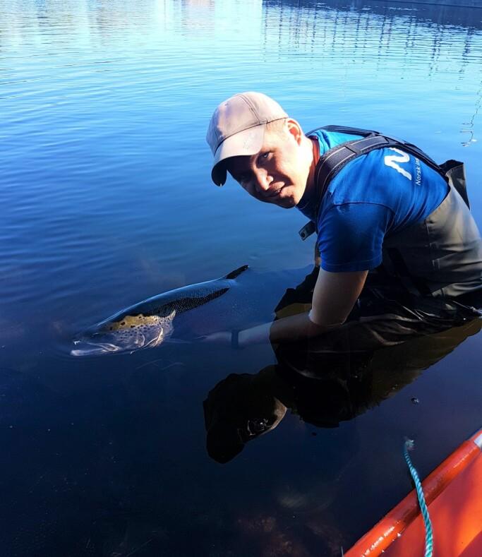 Tormod Haraldstad arbeider som forsker ved Norsk institutt for vannforskning.