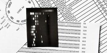 Avansert statistikk omdanner gendata til biomedisinsk kunnskap. (Foto: Shutterstock)