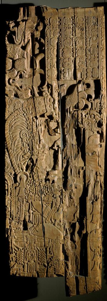 Se bildet i full størrelse Utskåret takbjelke fra mayabyen Tikal i Guatemala. Utskjæringene viser kong Jasaw Chan K'awiil sittende på en trone. Ansiktet er seinere blitt borte. Over ham er en jaguarskikkelse. Oppe i høyre hjørne er en tekst som beskriver slaget og hvilket år det skjedde etter mayakalenderen. Prøver fra treverket i denne bjelken er nå brukt til å kalibrere kalenderen mot vår egen. (Foto: Museum der Kulturen)