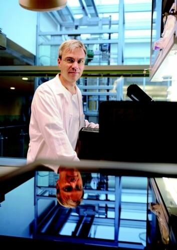 Professor Bjørn Tore Gjertsen ved Universitetet i Bergen. (Foto: Helge Skodvin)