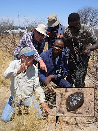 Mohutsiwa Gabadirwe (midten) og Peter Jenniskens (venstre) på stedet der de fant bit nummer to av asteroide 2018 LA, Central Kalahari viltreservat.