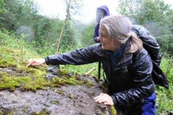 Geolog Gurli Meyer undersøker klebersteinen i Stolpelia ved Misvær i Nordland. (Foto: Gudmund Løvø)