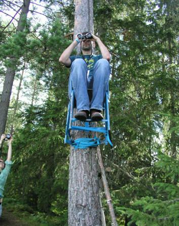 """""""Forsker Frank Egil Holm observerer festivalfolket. Stolen skulle vise seg å være en del av et performanceprosjekt."""""""