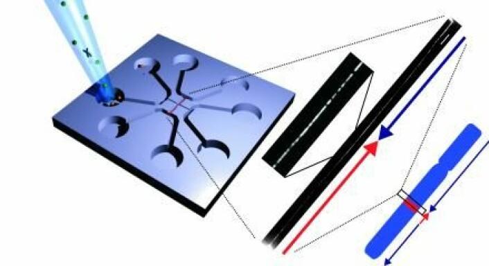 Forskere fra DTU har utviklet en ny teknikk til å studere DNA. Her et enkelt stykke DNA som er strukket i ut midten av en chip med mikro- og nanokanaler. Mønsteret på DNA-et fotograferes gjennom et mikroskop. Sammenligning av dette bildet med et mønster fra det referansegenomet viser at en del er snudd (pilene viser leseretningen). (Foto: Rodolphe Marie)